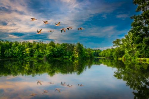 Walton Woods Park, Amherst, New York