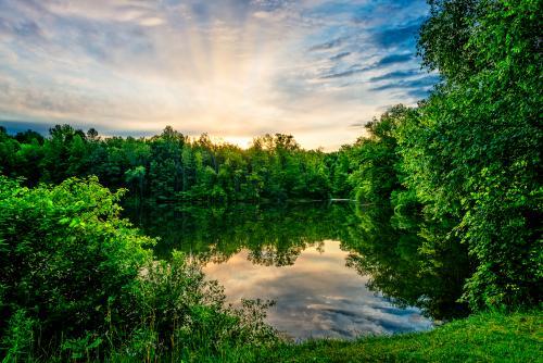 Walton Woods Park
