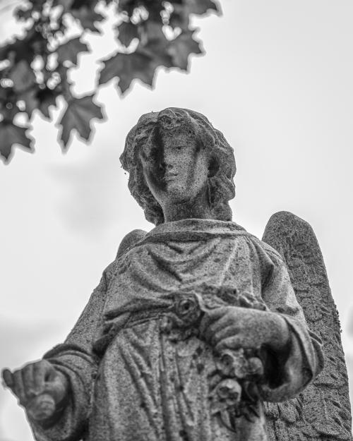0064-Statues